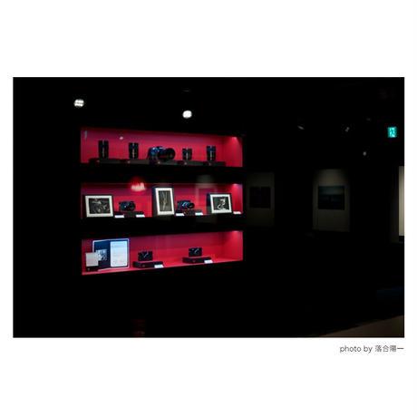 「情念との反芻」展示作品:「光を纏う枯れ木」プラチナプリント