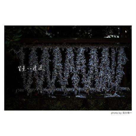 落合陽一写真集「質量への憧憬」