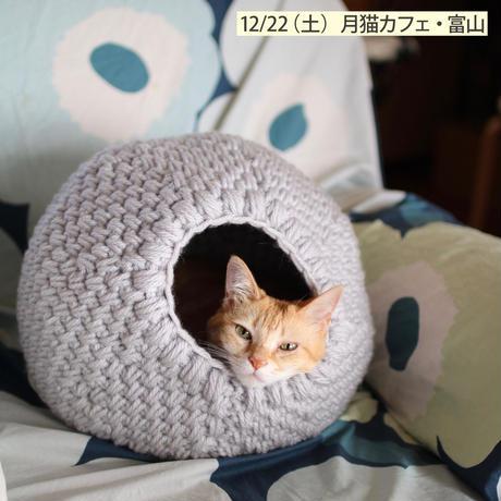 【終了】ワークショップ@月猫カフェ(富山、12/22)「キャットドーム」お申し込み