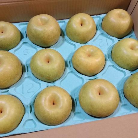 【8月限定・完全予約販売・8/9まで】『幸水』1箱(5kg・14玉)