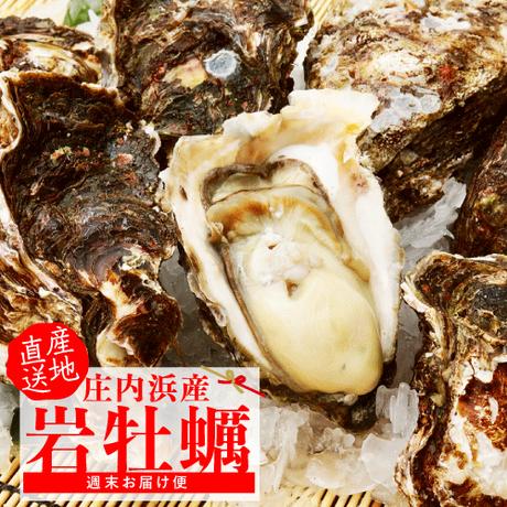 【吹浦産】 大サイズ 天然岩牡蠣 10ケ(約2.0kg)【金曜日出荷限定】6月18日発送スタート