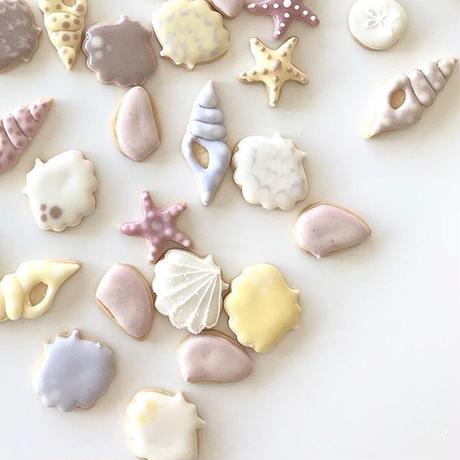 Pearl Coral & Star - Natural Icing Sea ShellCookie