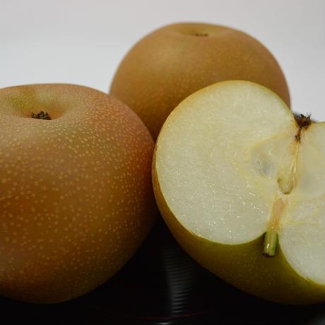 豊水梨 5kg