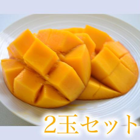 沖縄マンゴー2L1玉350g以上2玉セット
