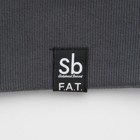 """FAT / D.M. """"RUPP""""  ( C.GRAY )"""