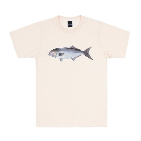 Only NY /  Bluefish T-shirt (Natural)