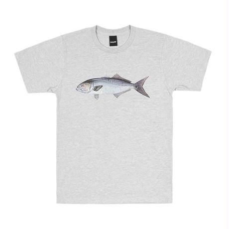 Only NY /  Bluefish T-shirt (Ash)