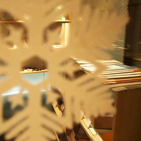 SNOWFLAKE #222 Web (L-size)