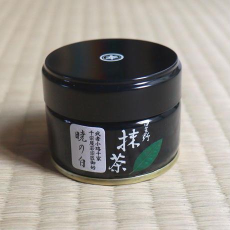 【入門セットA】千宗屋「季節のなかでお茶を愉しむ 〜茶の湯入門の入門」