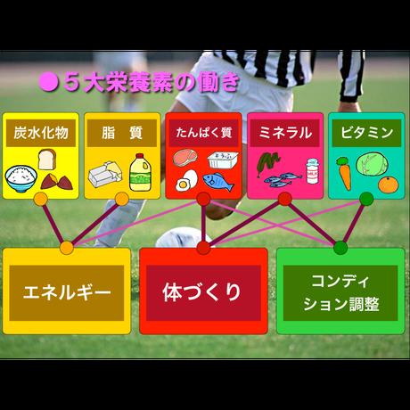 ジュニア・アスリート スポーツ栄養(for Win)