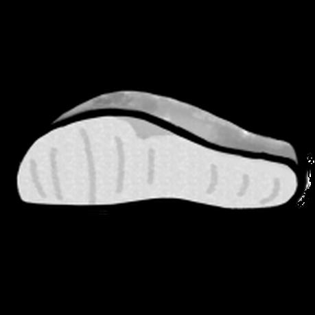 塩鮭(手書きイラスト)