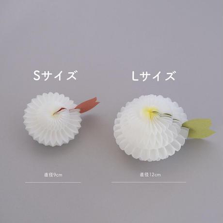 花さくメッセージカード / はっぱ / Lサイズ