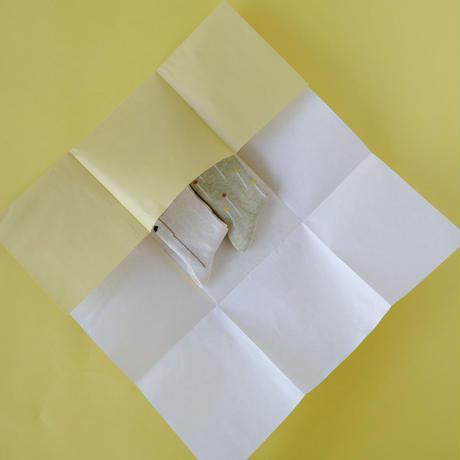 くつしたパッケージ ( お包みした状態でのお送りをご希望の場合 )