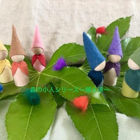 森の小人シリーズ キット 6色セット