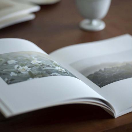 ましこのうた DVD & PHOTOBOOK
