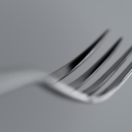 THE DINNER FORK MIRROR