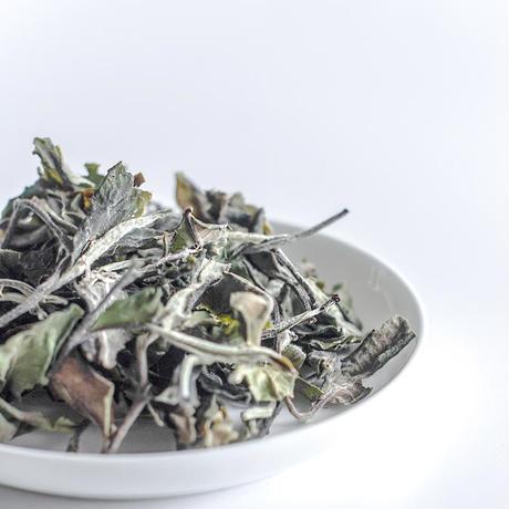 白茶 HANAE