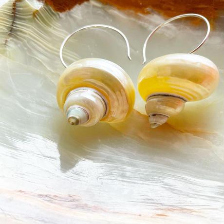 Luiny/Turbo Shell Earrings