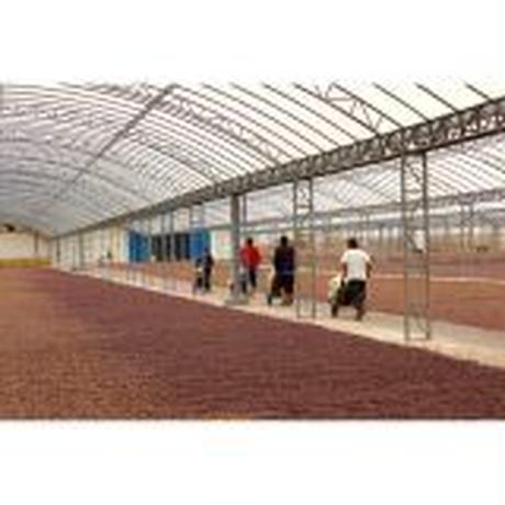 インドネシア ラスナ農園   200g