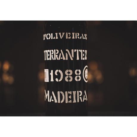 ドリヴェイラ ヴィンテージ テランテス 1988 (中辛口)