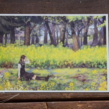 A5カード『春の午睡』