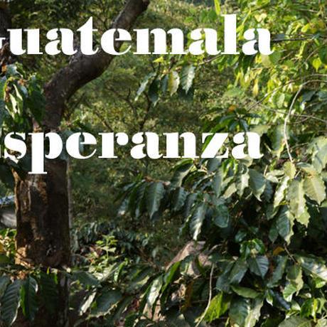 グアテマラ エスペランサ農園 200g