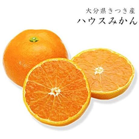 お中元 ハウスみかん 15~20玉 大分県産 ギフト箱