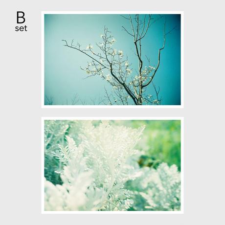 photo card <Bset>
