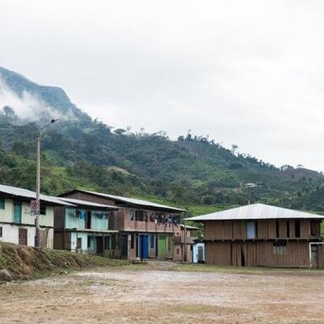 [LIGHT]PERU-RONY LAVAN 100g