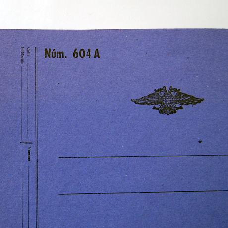51c1be5862d7d5f63e0000c2