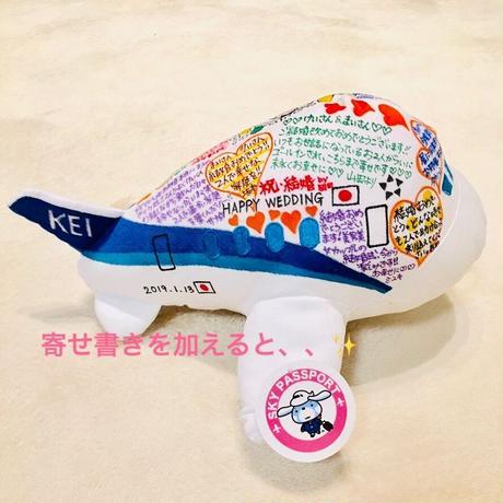 【ギフト専用】世界にひとつの特別塗装機✨ヒコーキ寄せ書きぬいぐるみセット
