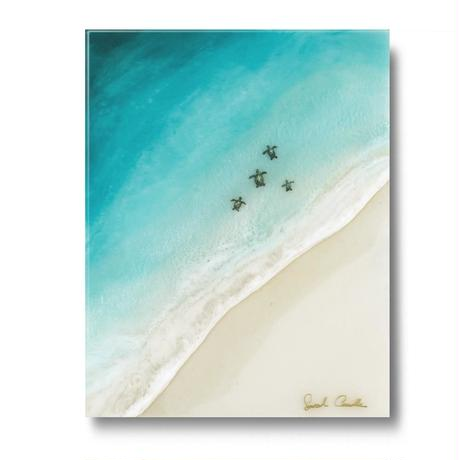 【Sarah Caudle / サラカードル】Honu Ohana 《Open Edition Resin Prints》12×16in