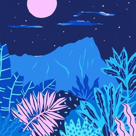 【Kim Sielbeck キム・シルベック】デジタルプリントアート Blue Hawaii V 11×14