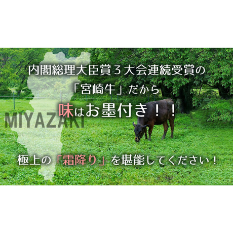 メガ盛り!宮崎牛カルビ1.2Kg #肉のながやま