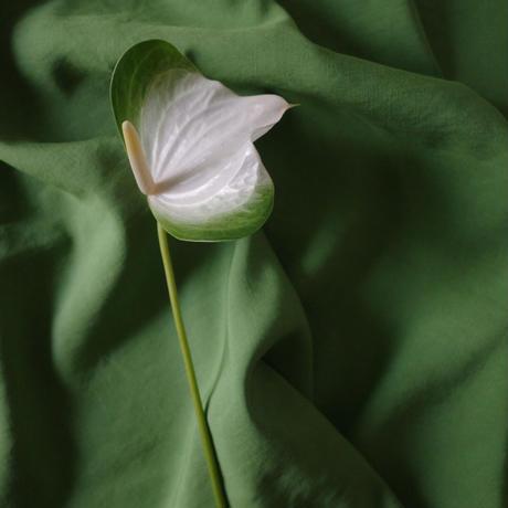 flower bag WRAP (S)