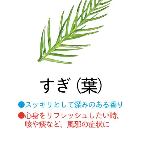 【森の香水】すぎ葉【容量 100mL】