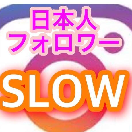 インスタグラム日本人フォロワー500人 ゆっくり増やす