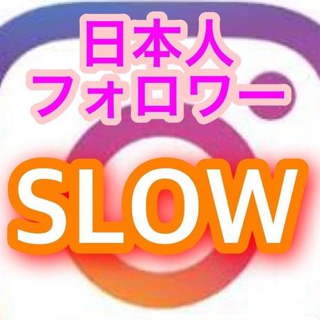 インスタグラム日本人フォロワー100人(1日10から15人ペース)