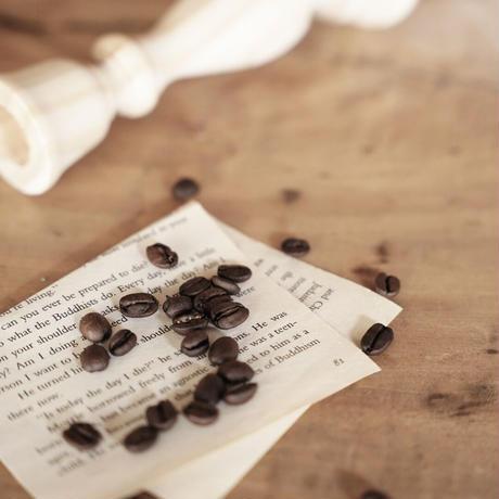 自家焙煎珈琲豆-春限定スペシャリティコーヒー-