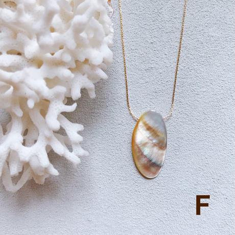 """【受注後製作】14KGF Carameliser Shiny Color Shell Necklace """"F"""""""