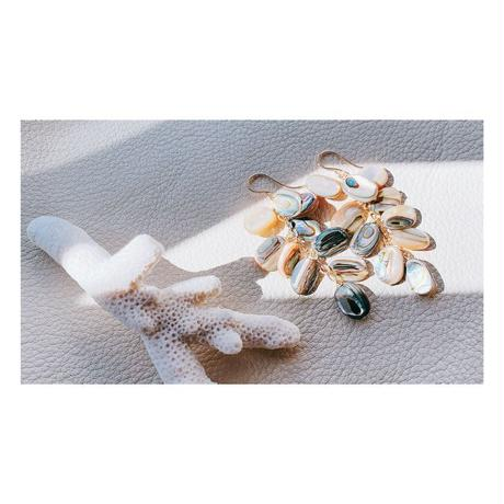 14KGF  Abaone Shell Feather Earrings