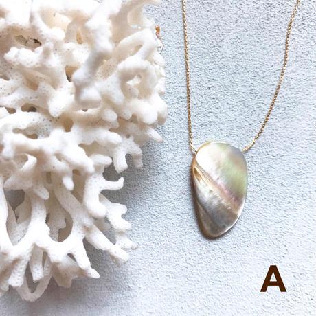 """【受注後製作】14KGF Carameliser Shiny Color Shell Necklace """"A"""""""