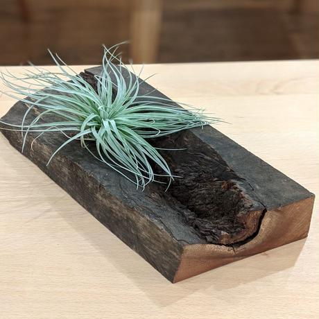 MO_101-木片オブジェ