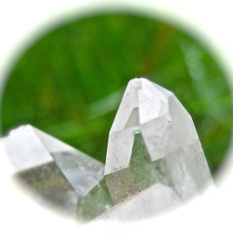 バイオダイナミック 調剤501番 水晶牛角調剤 300坪(1反)以下