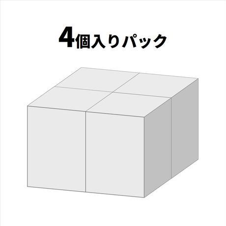 【予約受付終了】【4個入りパック】1/1 オニタマオヤモリ&アルマジロトカゲ《予約:2021年5月下旬発送予定》