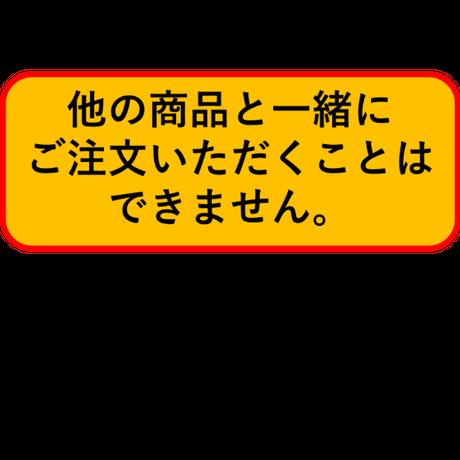 【予約販売】【4個入りパック】1/1 マメハチドリ《予約:2022年1月下旬発送予定》