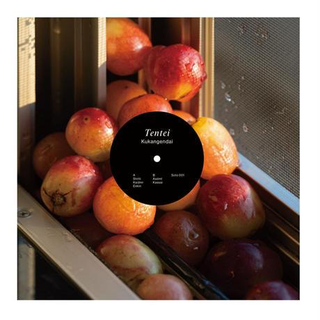 空間現代『Tentei』(12インチ・レコード)