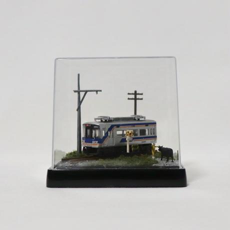 Bトレ・ベース_09(南海10000系サザン 1両付き)