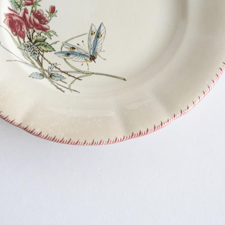 サルグミンヌ花と虫柄皿   (PL88)    1枚