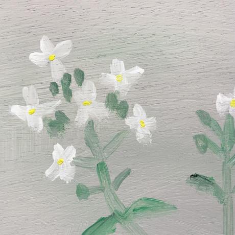 小池アミイゴ「大根の花」原画
